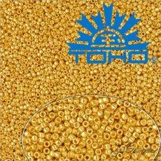 Toho Rokajl 11/0 - PermaFinish - Galvanized Starlight č.PF557 25g