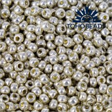 Toho Rokajl 8/0  PermaFinish - Galvanized Aluminum PF558 25g