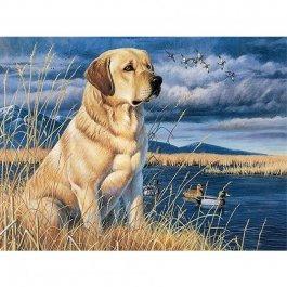 Diamantové maľovanie - pes a príroda 60x45 cm (ml001)
